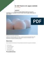 Experimento Del Huevo en Agua Salada