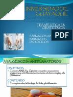 TERAPEUTICA exp.pptx