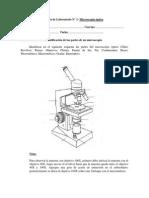 Guía Microscopía