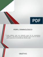Perfil Criminal 02