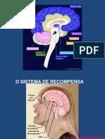 sistema_de_recompensa.pdf