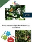 Avances y Aprendizajes PMC Cacao GDR