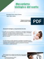 Mecanismo Neurofisiológico Del Sueño (1)