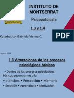 Psicopatologia 1.3 y 1.4