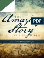 Amazing Bible Story