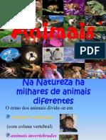 animaisvertebradoseinvertebrados-130327200420-phpapp02