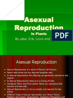 Asexual Reproduction Shan