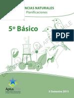 Planificacion 5 II SEM 2013