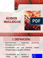 Acidos Nucleicos cepre
