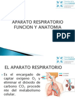 2.-Sistema Cardiovascular y Respiratorio Expo