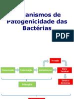 Aula Patogenicidade