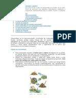 Manual de Compostaje Casero.pdf
