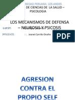 Los Mecanismos de Defensa – Neurosis y Psicosis