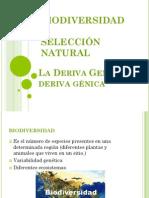 Biodiversidad,Selec Natural,Deriva Génica