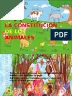 LA CONSTITUCION DE LOS ANIMALES