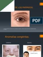 Patologías de Los Parpados