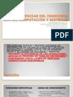 Rol Del Ing. de Computación y Sistemas