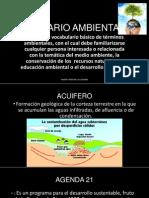 GLOSARIO AMBIENTAL (1)
