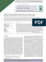 Articulo Biorreactores