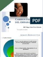 cambiosfisiolgicosdelembarazo-111120224418-phpapp02