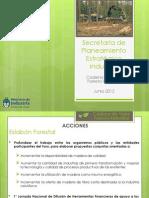 Plan de Accion Foresto Industrial