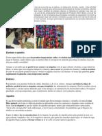 Industria Textil en Guatemala Es Aquel Tipo de Economía Que Se Dedica a La Elaboración de Telas