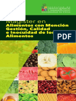 Magister Alimentos Con Mencion Gestion Hojas