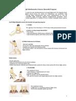 Ayak Bilegi Sakatlanmalari Sonrasi Jimnastik Programi (Dr.sedat Yildiz)