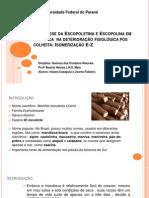 Biosintese Da Escopoletina e Escopolina Em Mandioca Deterioração Ok