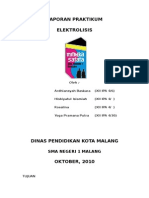42461202-elektrolisis