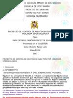 tesishidatidosisact-131203084331-phpapp01