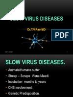 .Slow Virus