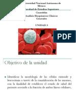 UIV_ERITROCITOS