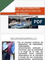 signos neurologicos blandos