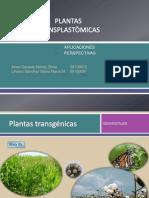 Plantas Transplastómicas, Aplicaciones y Perspectivas
