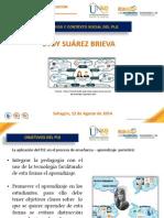 Objetivos y Contexto Social Del Ple