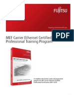 Mef Cecp Training