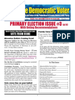 #17 Primary Election Issue #3