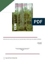 Descripcion Silvicultural de Las Plantaciones Forestales De