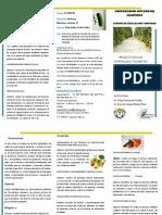 Hortalizas y Flores.pdf
