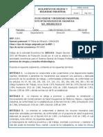 Ss-In-05 Reglamento de Higiene y Seguridad Industrial