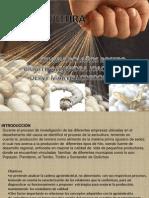 Preyecto de Agroindustria