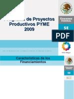 PPP PYME  Durango