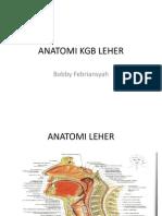 Anatomi Kgb Leher (Bo)