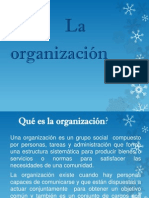 Que Es Organizacion