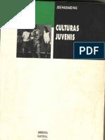 Culturas Juvenis - José Machado Pais - Introdução