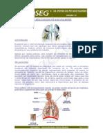 Infoseg Edicao12 Os Efeitos Do Po Nos Pulmoes