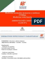 Clase 2 Dermatosis Infecciosas y Parasitarias