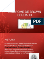 Sx de Brown Sequard