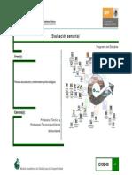 Evaluacionsensorial Rosado Programa de Estudios